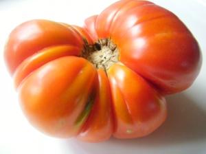Tomate de Muskiz