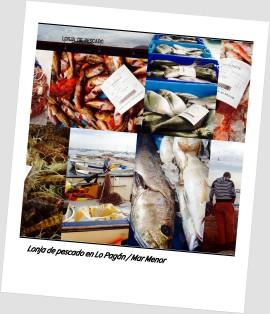 Lonja de pescado 3