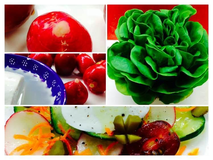 Ensalada de pepino, rabanito zanahoria  y mozzarella_Fotor