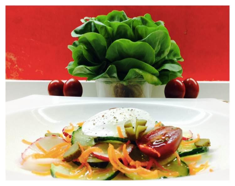 Ensalada de pepino, rabanitos, zanahoria y mozzarella