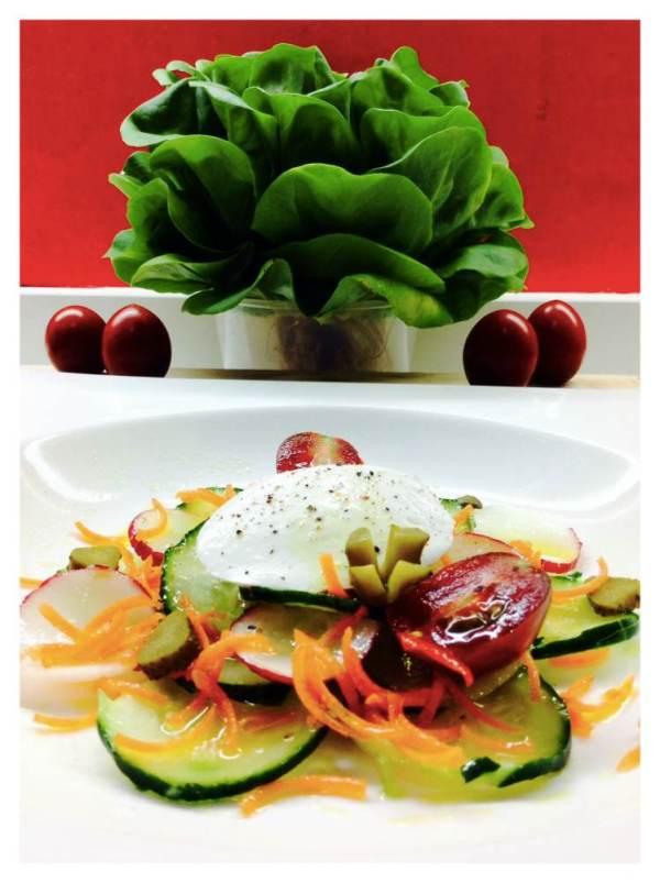 Ensalada de pepino zanahorias rabanitos y mozzarella